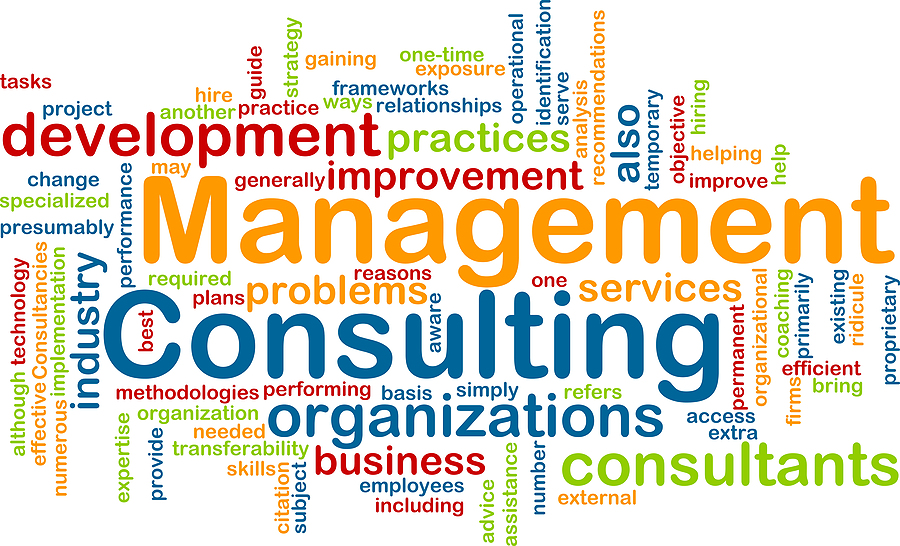 Image result for management consulting services